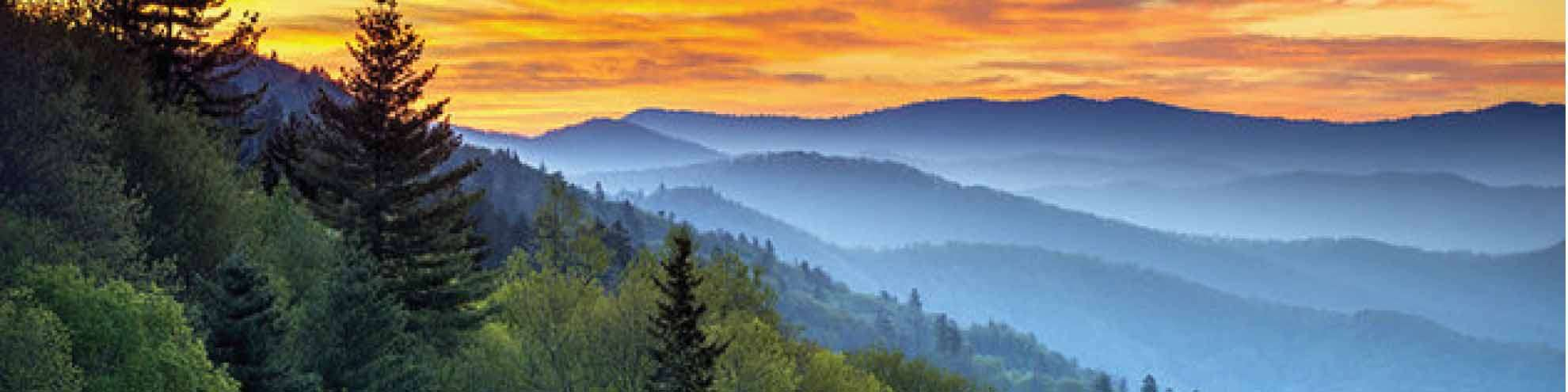 4 Ways You Can Save With Our Smoky Mountain Coupons